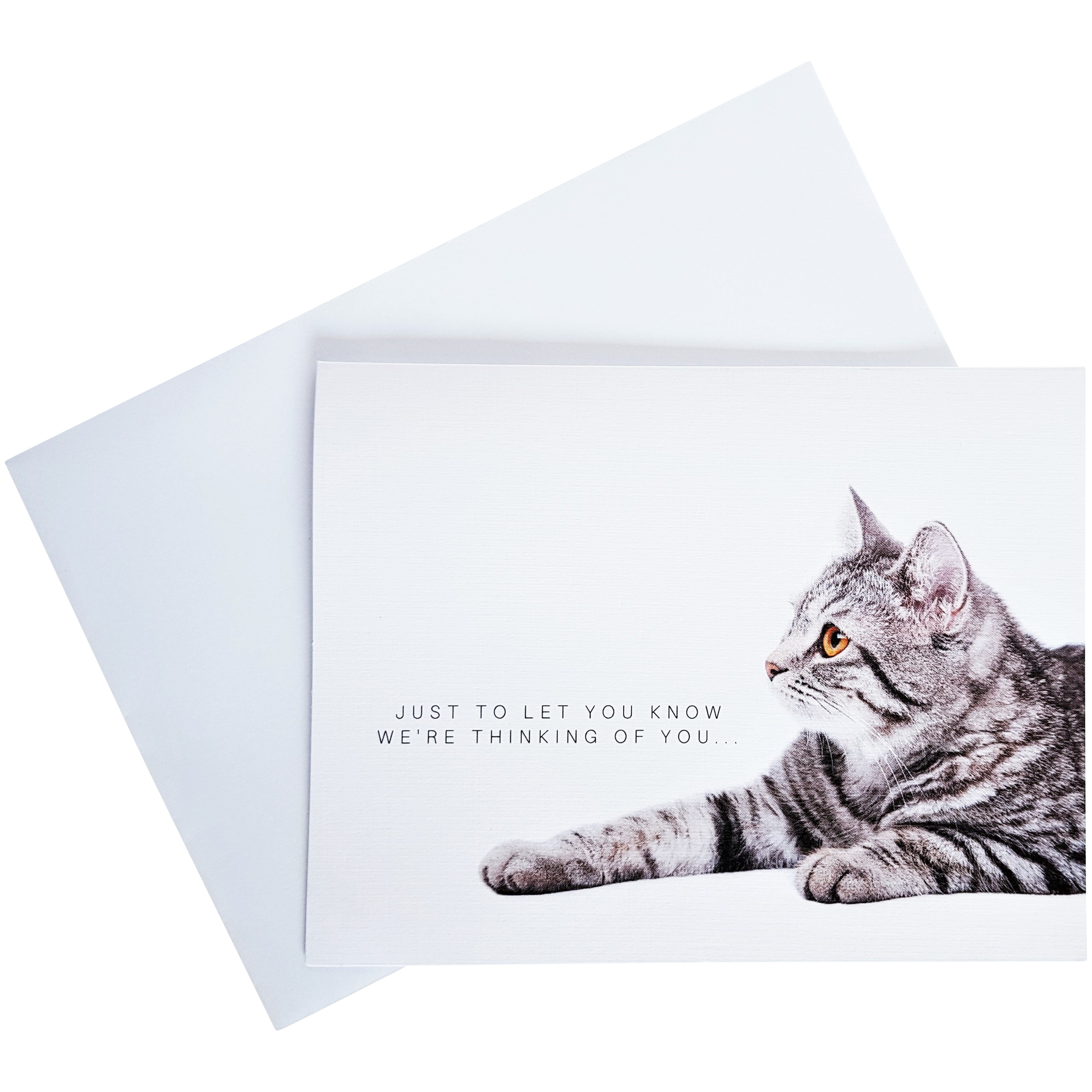 cat sympathy card pet loss