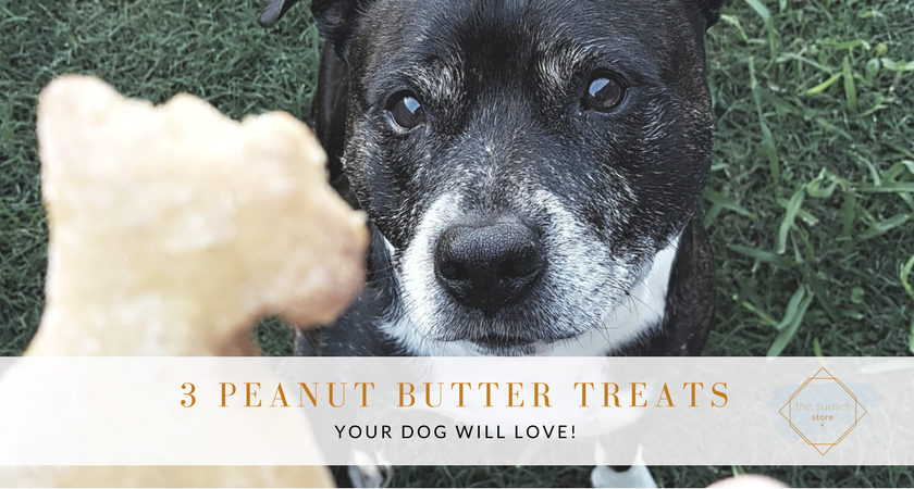3 peanut butter treats your dog will love